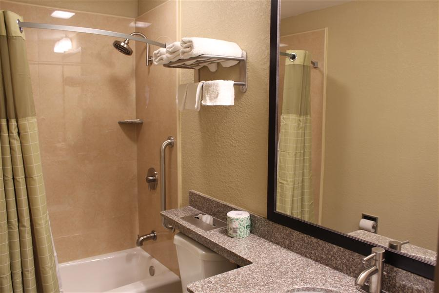 Suite Bathroom_20161015-18425077.JPG