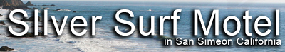 Image of Silver Surf Motel's Logo
